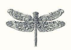 Alex-Konahin-little-wings_6